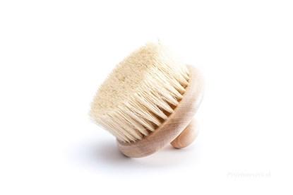 Obrázok pre výrobcu Masážna kefa s vláknami tampico bez rúčky