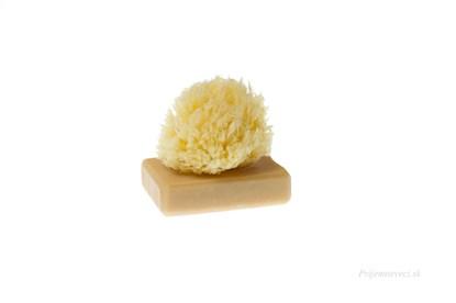 Obrázok pre výrobcu Morská huba Honeycombe - malá bielená