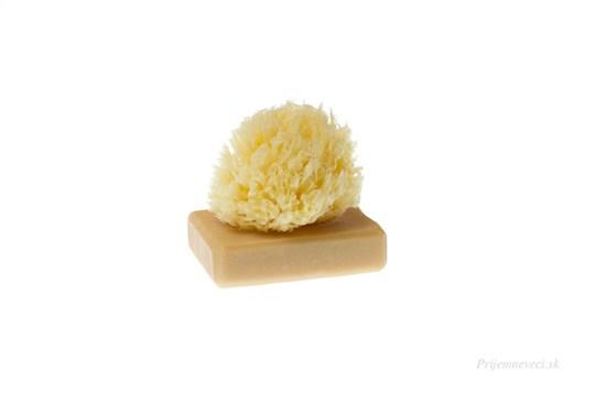 Morská huba Honeycombe - malá bielená