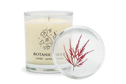 Obrázok pre výrobcu Sójová sviečka Botanicandle - veľká - céder, santal, klinček