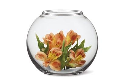 Obrázok pre výrobcu Sklenená váza Simax